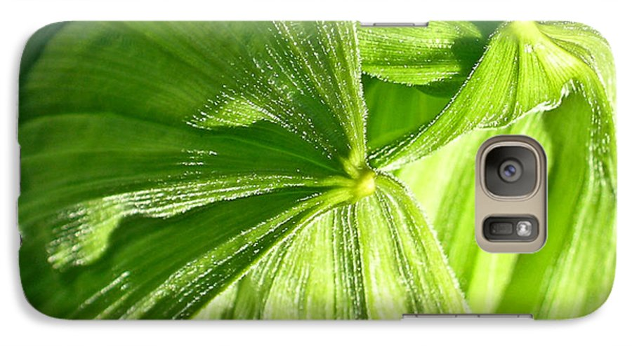 Plant Galaxy S7 Case featuring the photograph Emerging Plants by Douglas Barnett