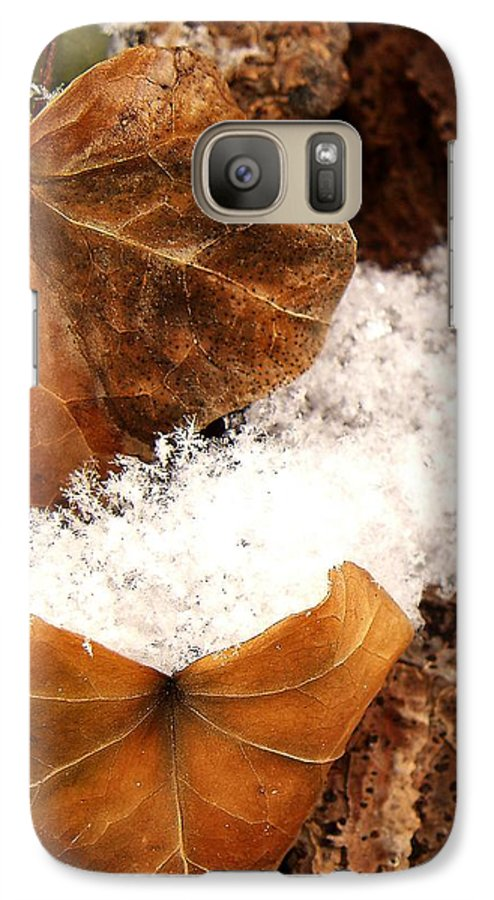 Fall Galaxy S7 Case featuring the photograph Fall And Winter by Gaby Swanson