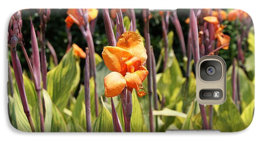 Floral Galaxy S7 Case featuring the photograph Field For Iris by Shelley Jones