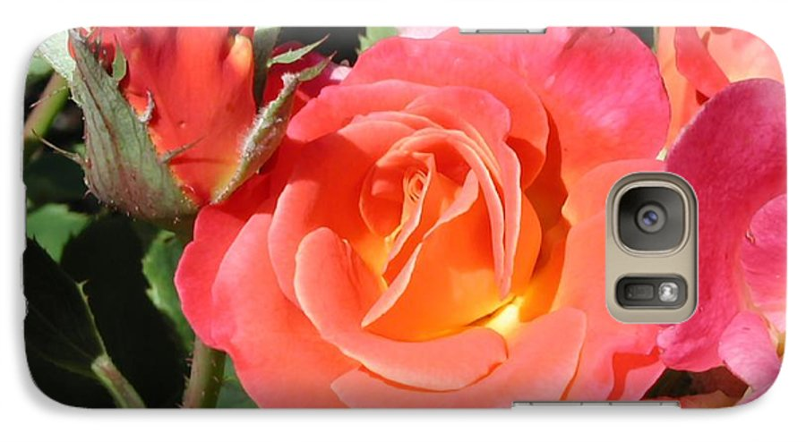 Photograph Galaxy S7 Case featuring the photograph Firey Passion Rose by Dave Martsolf