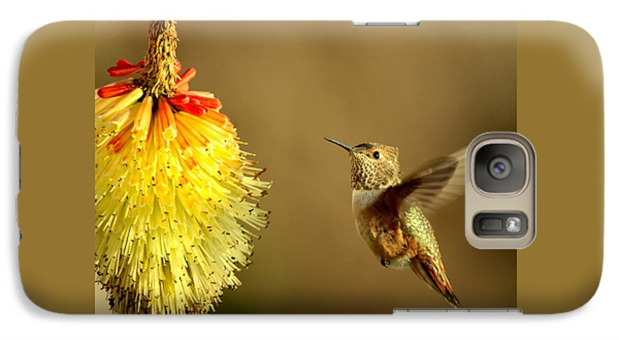 Hummingbird Galaxy S7 Case featuring the photograph Flight Of The Hummer by Mike Dawson