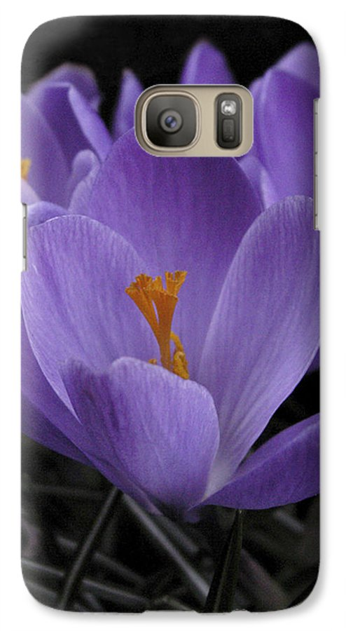Flowers Galaxy S7 Case featuring the photograph Flower Crocus by Nancy Griswold