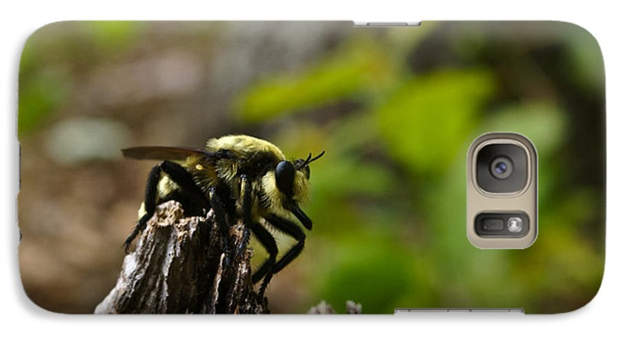 Fly Galaxy S7 Case featuring the photograph Fly On Mountain by Douglas Barnett