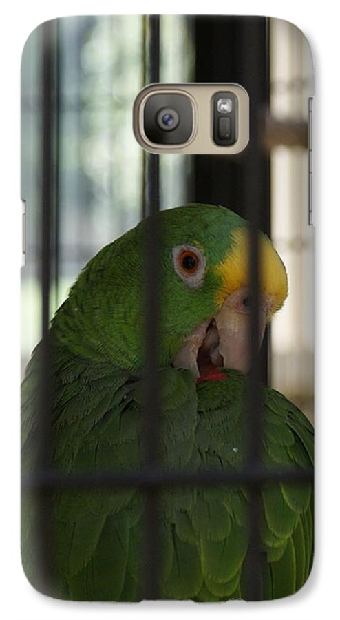 Parrot Galaxy S7 Case featuring the photograph Framed by Shelley Jones