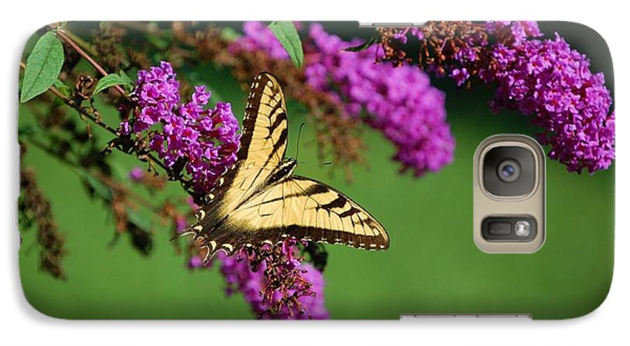 Butterfly Galaxy S7 Case featuring the photograph Freedom by Debbi Granruth