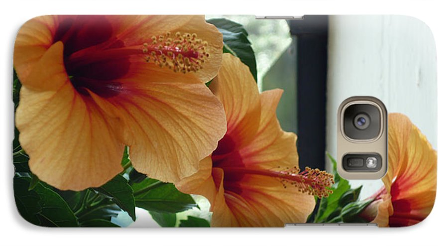 Photography Flower Floral Bloom Hibiscus Peach Galaxy S7 Case featuring the photograph Friends For A Day by Karin Dawn Kelshall- Best