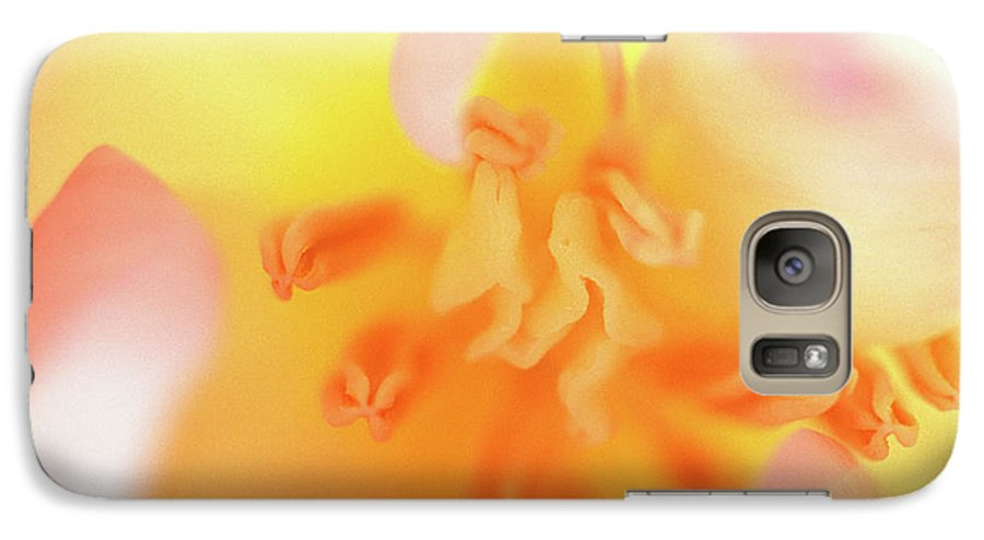 Internal Beauty Of A Tulip Galaxy S7 Case featuring the photograph From The Heart by Bill Morgenstern