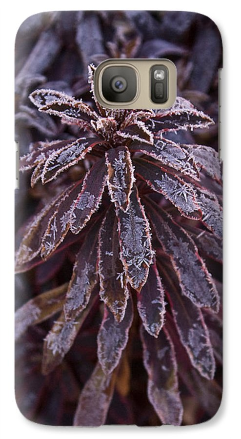 Christmas Galaxy S7 Case featuring the photograph Frozen Christmas by Douglas Barnett