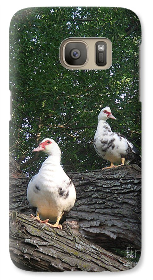 Nature Galaxy S7 Case featuring the photograph Getting A Better View by Lucyna A M Green