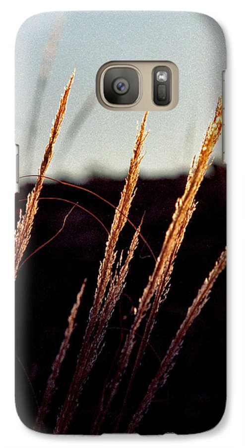Grass Galaxy S7 Case featuring the photograph Glistening Grass by Randy Oberg