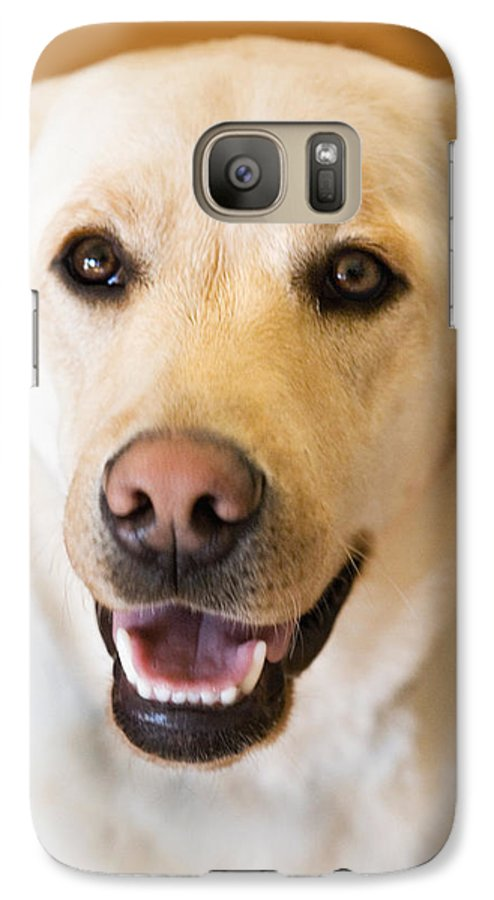 Lab Galaxy S7 Case featuring the photograph Golden Lab by Marilyn Hunt