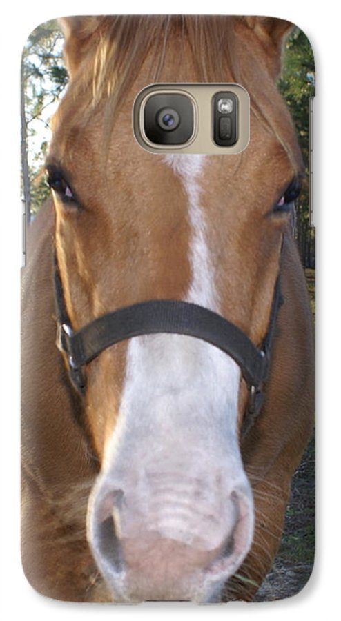 Horse Galaxy S7 Case featuring the painting Got Sugar by Debbie May
