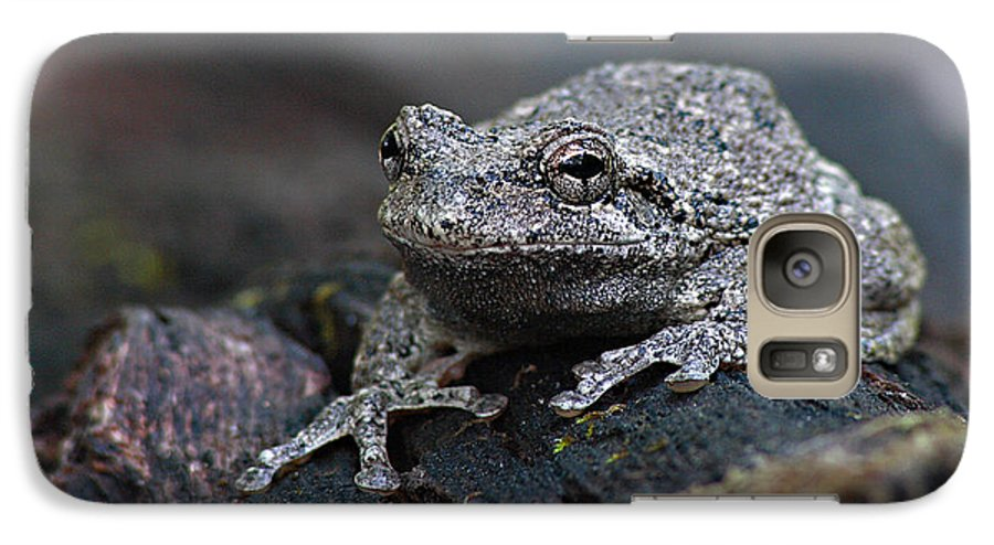 Frog Galaxy S7 Case featuring the photograph Gray Treefrog On A Log by Max Allen