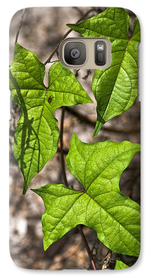 Green Galaxy S7 Case featuring the photograph Green Arrowheads by Christopher Holmes