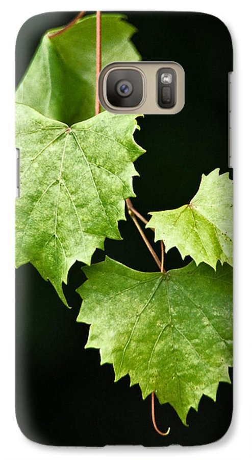 Flora Galaxy S7 Case featuring the photograph Green Leaves by Christopher Holmes