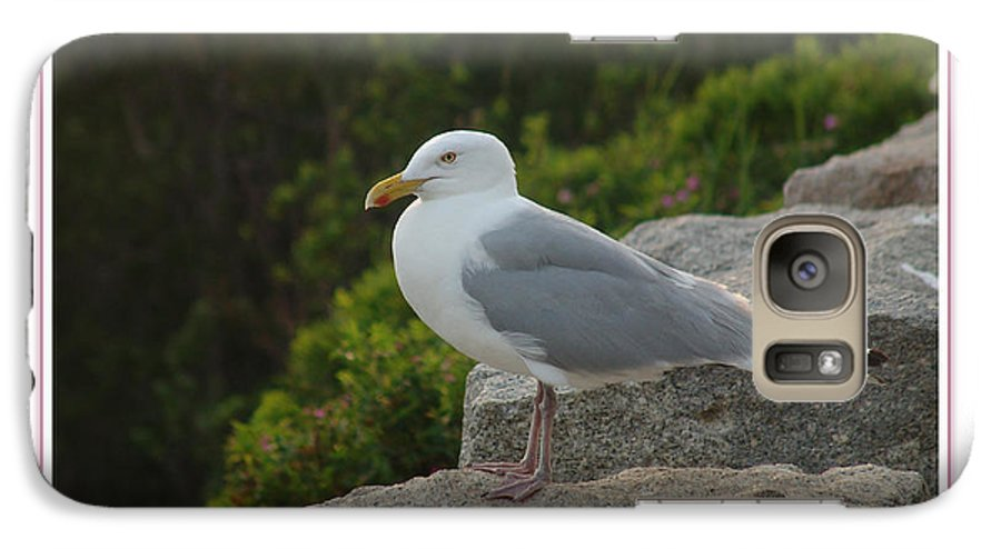Landscape Galaxy S7 Case featuring the photograph Gull Able by Peter Muzyka
