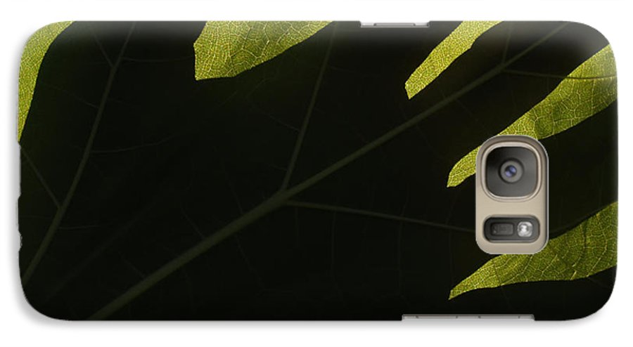 Hand Galaxy S7 Case featuring the photograph Hand And Catalpa Veins Backlit by Anna Lisa Yoder