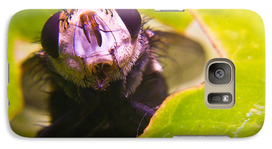 Fly Galaxy S7 Case featuring the photograph Hi There by Douglas Barnett