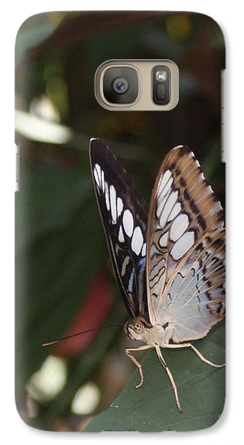 Butterfly Galaxy S7 Case featuring the photograph Hints Of Blue by Shelley Jones