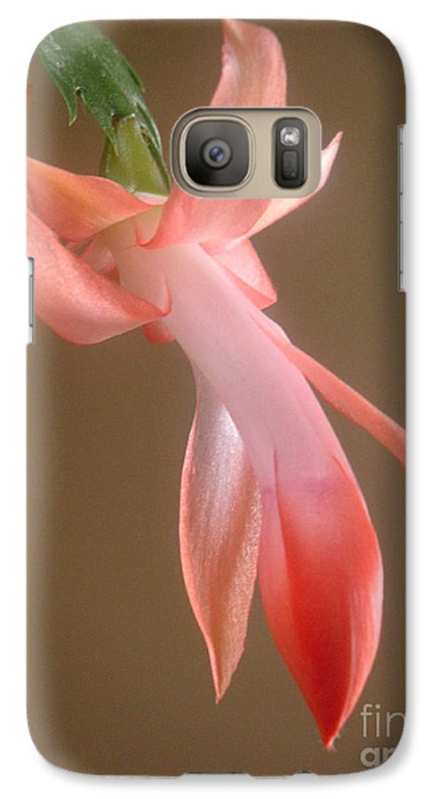 Nature Galaxy S7 Case featuring the photograph Holiday Cactus - In Day Light by Lucyna A M Green