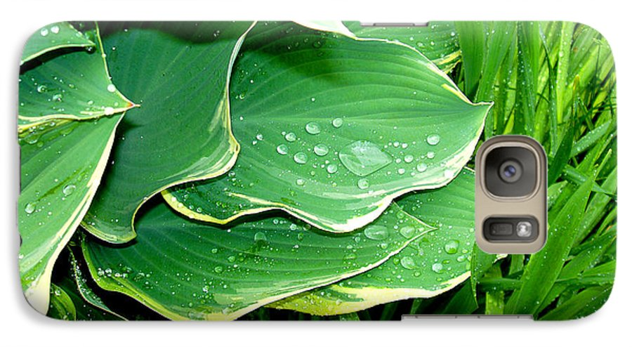 Hostas Galaxy S7 Case featuring the photograph Hosta Leaves And Waterdrops by Nancy Mueller