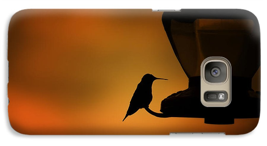 Hummingbird Galaxy S7 Case featuring the photograph Hummingbird After The Storm by Al Mueller