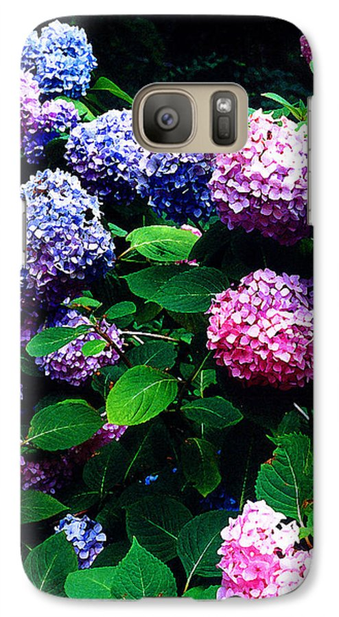 Flowers Galaxy S7 Case featuring the photograph Hydrangeas by Nancy Mueller