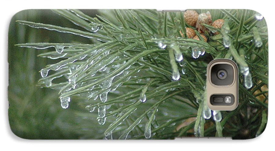 Nature Galaxy S7 Case featuring the photograph Iced Pine by Kathy Schumann