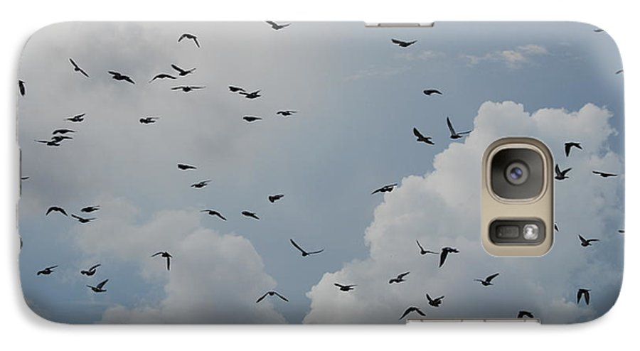Birds Galaxy S7 Case featuring the photograph In Flight by Rob Hans