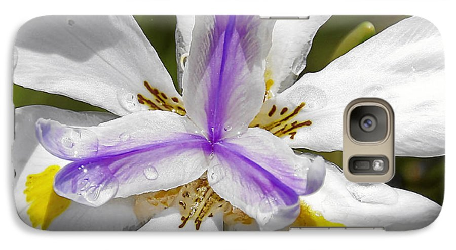 Flower Galaxy S7 Case featuring the photograph Iris An Explosion Of Friendly Colors by Christine Till