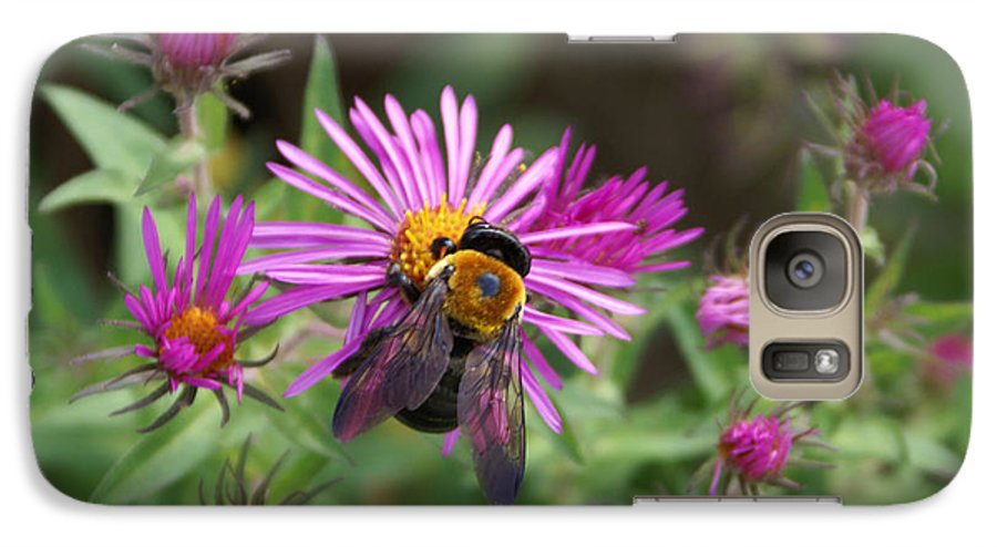 Bumble Bee Galaxy S7 Case featuring the photograph Just Beeing Debbie-may by Debbie May