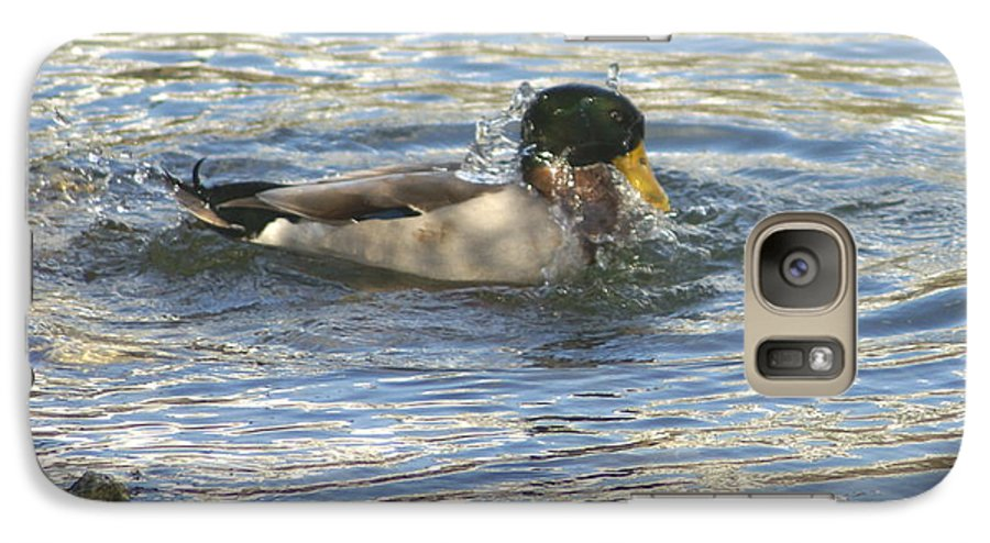 Ducks Galaxy S7 Case featuring the photograph Just Ducking Around by Debbie May