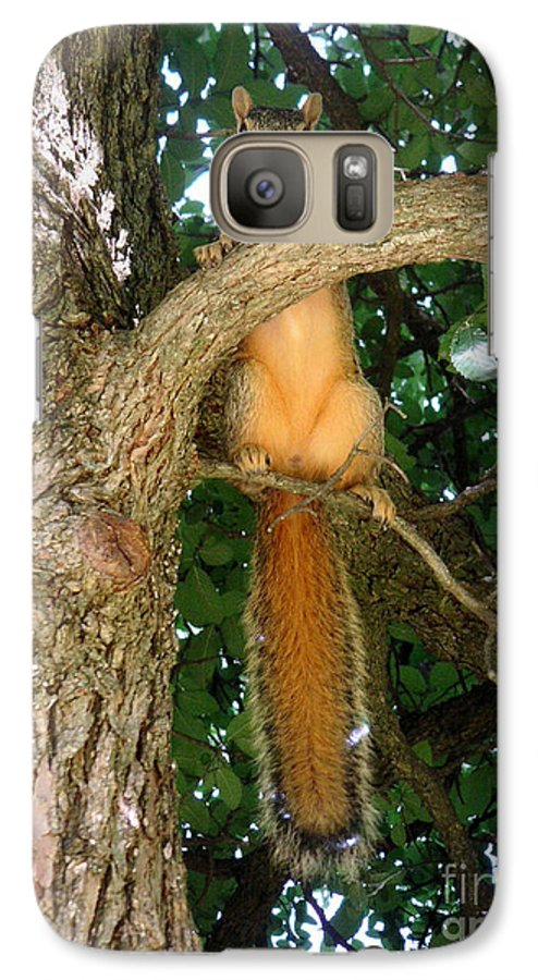 Nature Galaxy S7 Case featuring the photograph Just Hanging Around by Lucyna A M Green