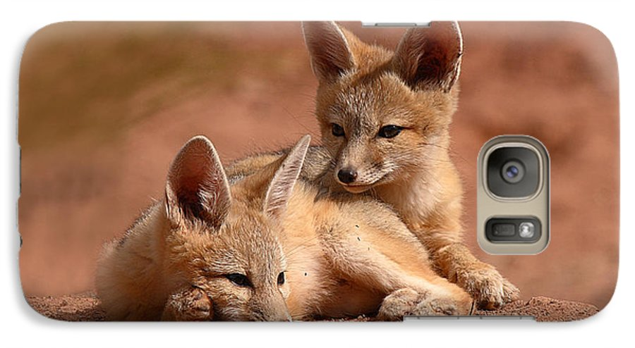 Fox Galaxy S7 Case featuring the photograph Kit Fox Pups On A Lazy Day by Max Allen