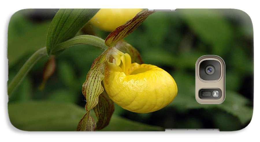 Ladyslipper Galaxy S7 Case featuring the photograph Lady Slipper by Kathy Schumann