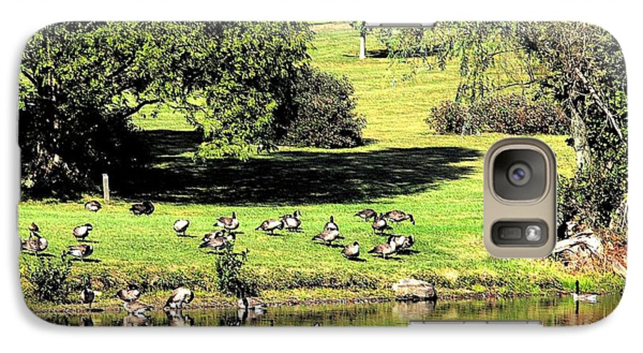 Bird Galaxy S7 Case featuring the photograph Last Days Of Summer by Gaby Swanson