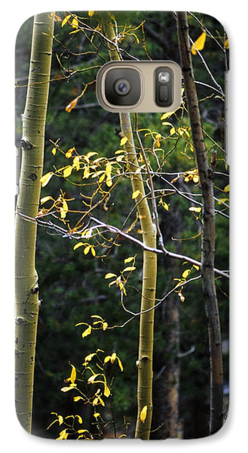 Aspen Galaxy S7 Case featuring the photograph Late Aspen by Jerry McElroy