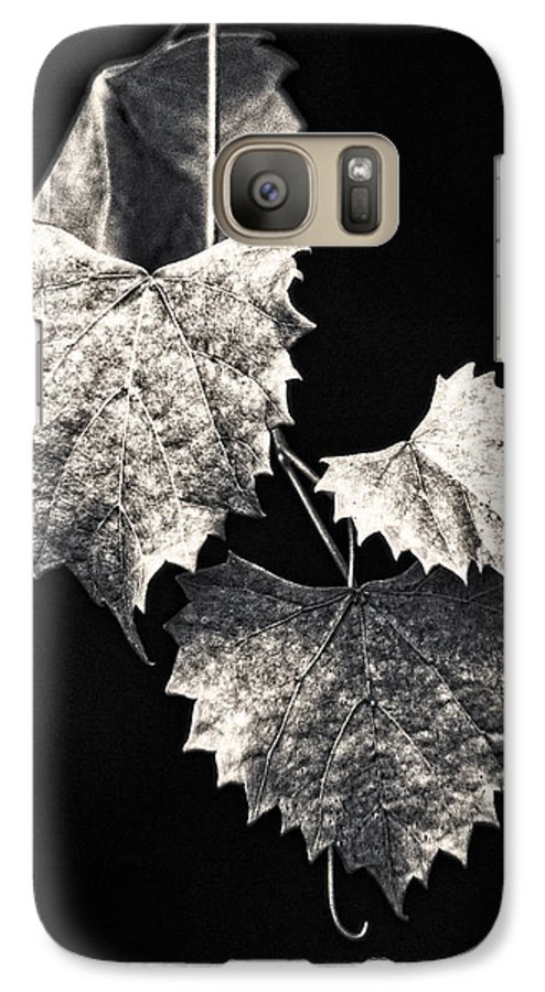 B&w Galaxy S7 Case featuring the photograph Leaves by Christopher Holmes