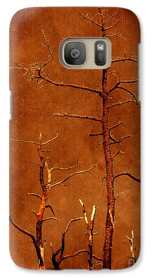Dipasquale Galaxy S7 Case featuring the photograph Left Bare And Broken by Dana DiPasquale