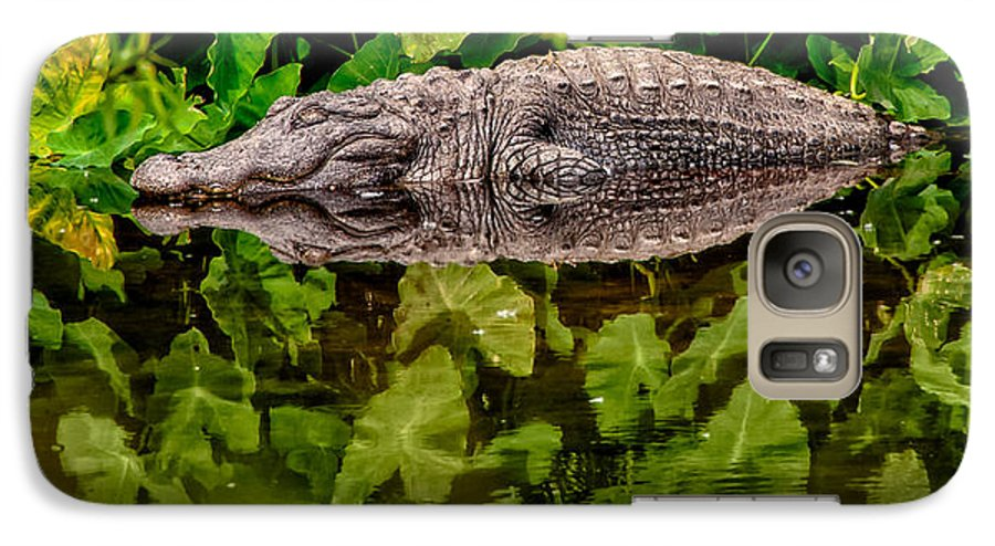 Alligator Galaxy S7 Case featuring the photograph Let Sleeping Gators Lie by Christopher Holmes