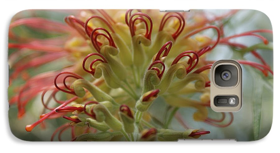 Floral Galaxy S7 Case featuring the photograph Like Stems Of A Cherry by Shelley Jones