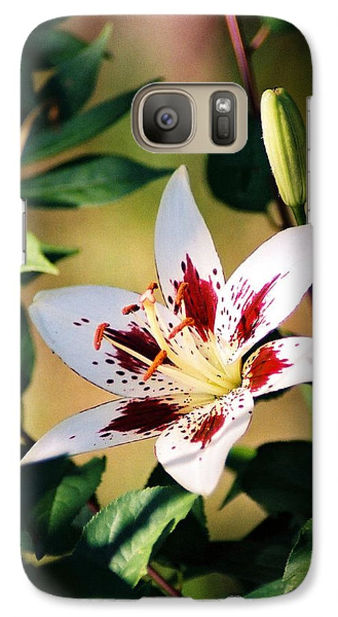 Flower Galaxy S7 Case featuring the photograph Lily by Steve Karol