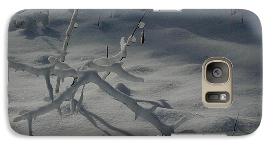 Loneliness Galaxy S7 Case featuring the photograph Loneliness In The Cold by Douglas Barnett