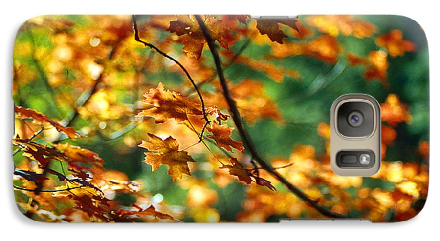 Fall Color Galaxy S7 Case featuring the photograph Lost In Leaves by Kathy McClure