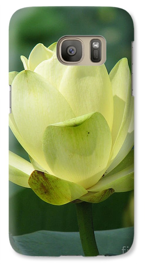 Lotus Galaxy S7 Case featuring the photograph Lotus by Amanda Barcon