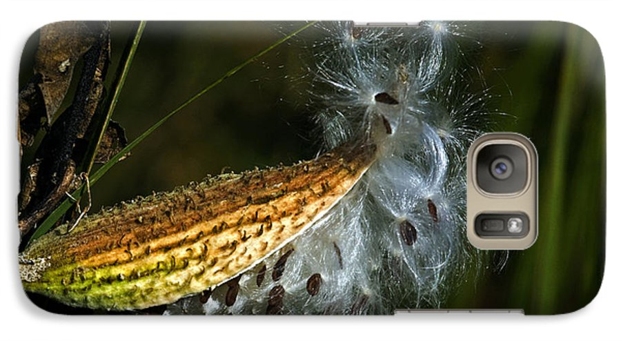 Autumn Galaxy S7 Case featuring the photograph Milkweed Pod by Al Mueller