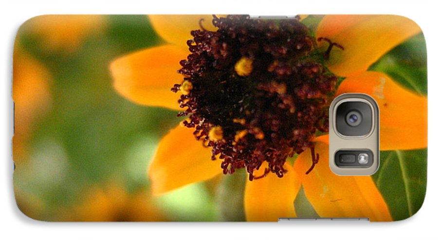 Flower Galaxy S7 Case featuring the photograph Mini Sunflower by Melissa Parks