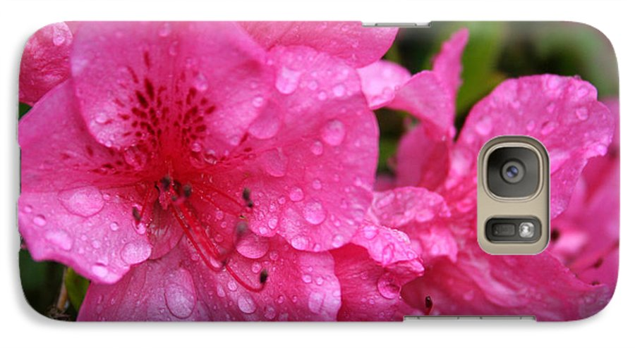Azaleas Galaxy S7 Case featuring the photograph Morning Dew by Mary Gaines
