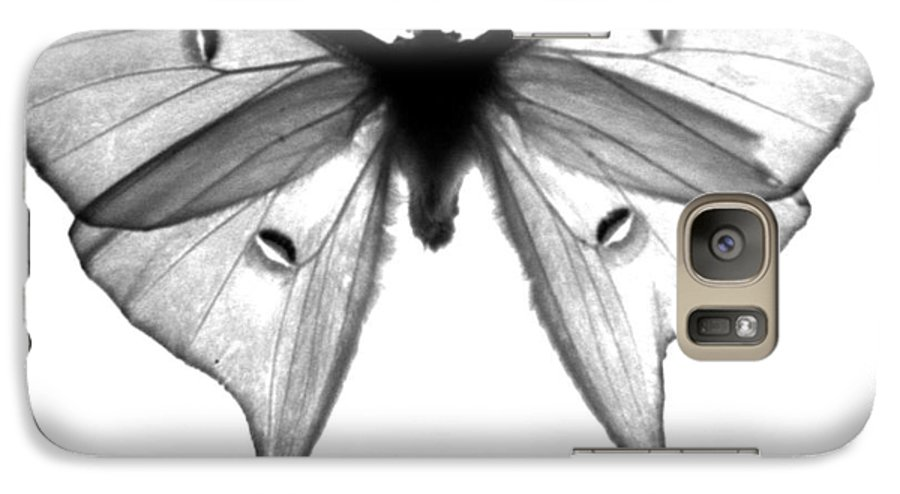 Moth Galaxy S7 Case featuring the photograph Moth by Amanda Barcon