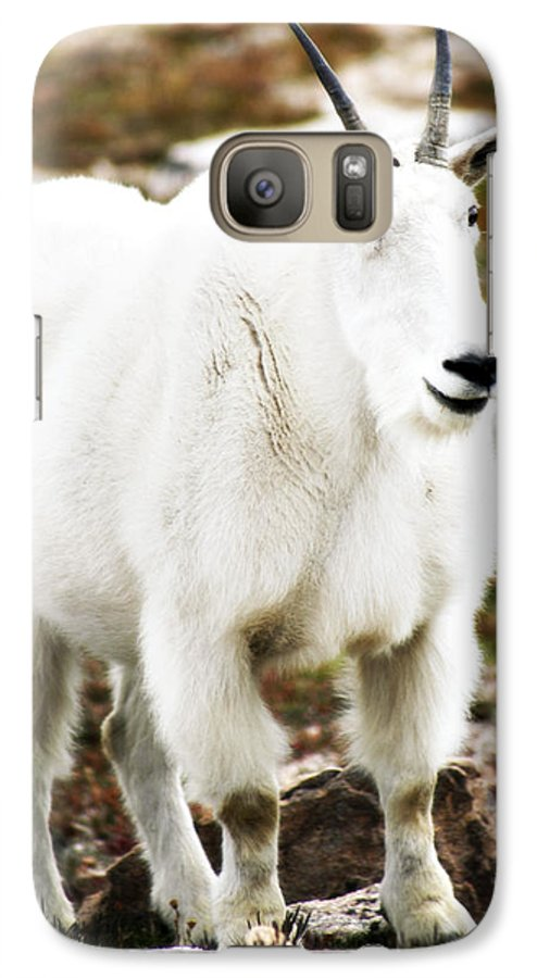 Animal Galaxy S7 Case featuring the photograph Mountain Goat by Marilyn Hunt